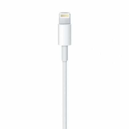 Câble Lightning vers USB (1 m)